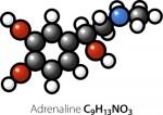 Адреналин или эпинефрин